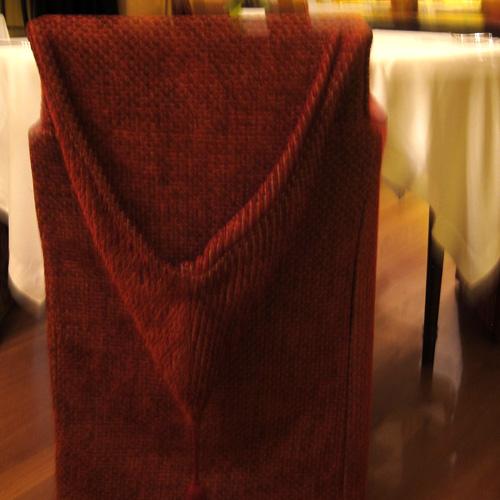 Chair hood