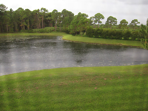 "Rain on ""our"" lake"