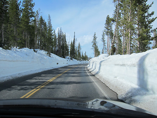 Tons of snow!