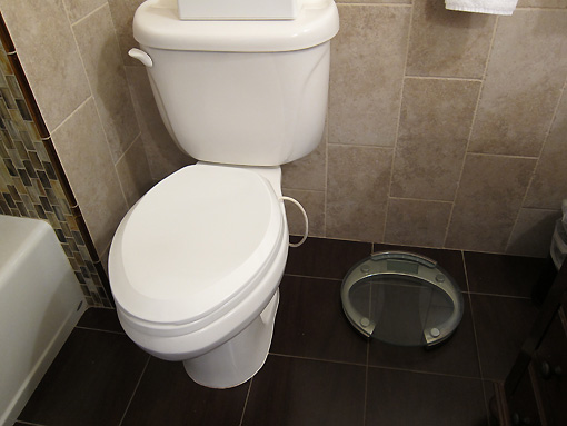 See the little cord coming from the toilet? Yes.  The seat is heated...