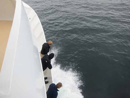 Watching the super fast Dall's Porpoise playing in our wake